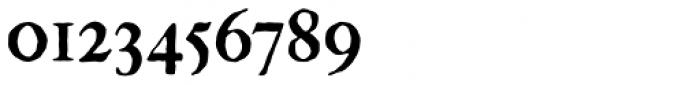 Gutenberg C Font OTHER CHARS