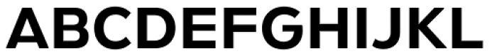 Gymkhana Regular Font UPPERCASE
