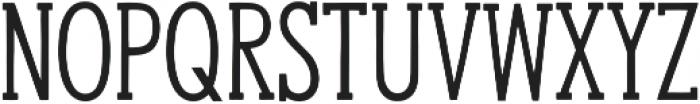 Hanley Slim Serif otf (400) Font UPPERCASE