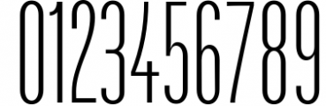Havanna - Tall sans typeface with 3 weights 2 Font OTHER CHARS
