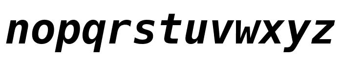 Hack Bold Italic Font LOWERCASE