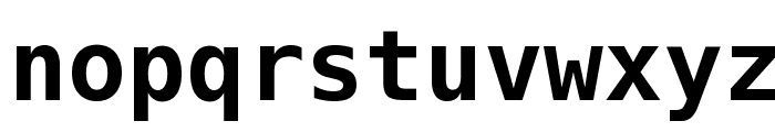 Hack Bold Font LOWERCASE