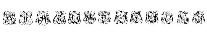 HardtoReadMonograms Font LOWERCASE