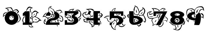 Hawaiiah Font OTHER CHARS