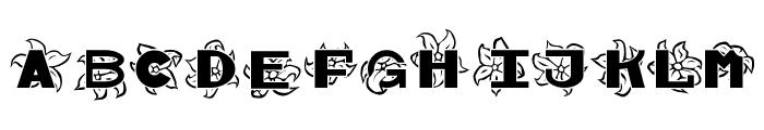 Hawaiiah Font UPPERCASE