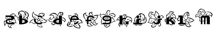 Hawaiiah Font LOWERCASE