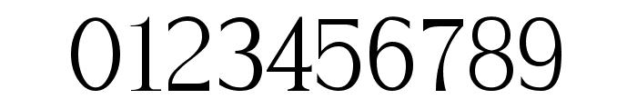Hayashi-Serif Font OTHER CHARS