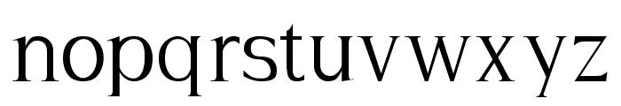 Hayashi-Serif Font LOWERCASE