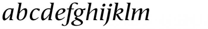 Haggard Nova Italic Font LOWERCASE