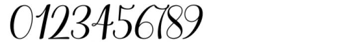 Haileyna Regular Font OTHER CHARS