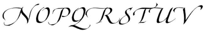 Hamada Pro Roman Font UPPERCASE