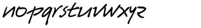 Harico Handwriting Pro Font LOWERCASE