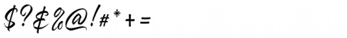 Hayne Script Clean Regular Font OTHER CHARS