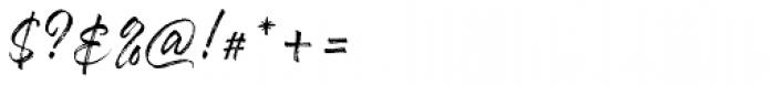 Hayne Script Regular Font OTHER CHARS