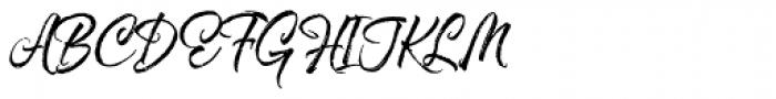 Hayne Script Regular Font UPPERCASE