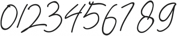 Herbert Signature ttf (400) Font OTHER CHARS