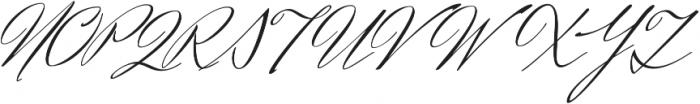 HerrVonMuellerhoff Pro otf (400) Font UPPERCASE