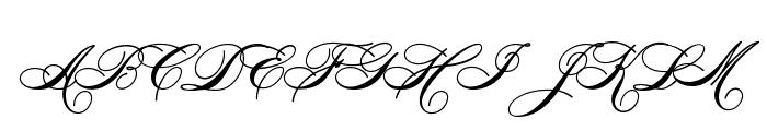 HeddyOptiScript Font UPPERCASE