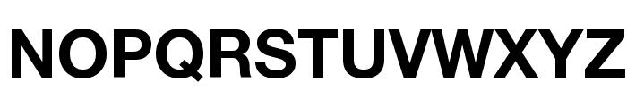 Helvetica Neue Bold Font UPPERCASE