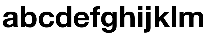 Helvetica Neue Bold Font LOWERCASE