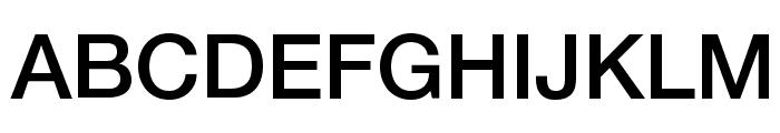 Helvetica Neue Medium Font UPPERCASE