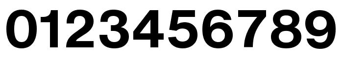 HelveticaNowText-Bold Font OTHER CHARS