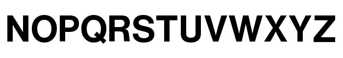 HelveticaNowText-Bold Font UPPERCASE
