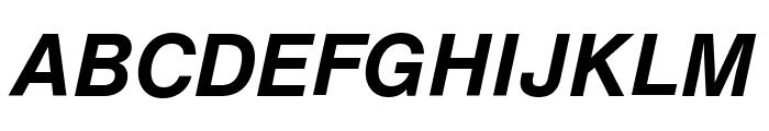HelveticaNowText-BoldItalic Font UPPERCASE