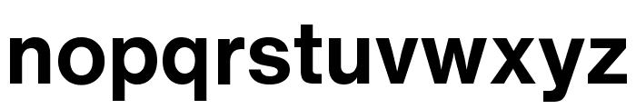 HelveticaNowText-Bold Font LOWERCASE