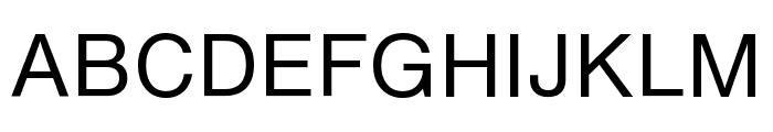 HelveticaNowText-Regular Font UPPERCASE
