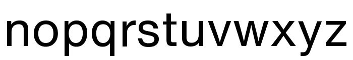 HelveticaNowText-Regular Font LOWERCASE
