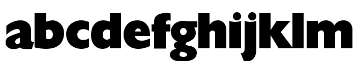 Herald Regular Font LOWERCASE