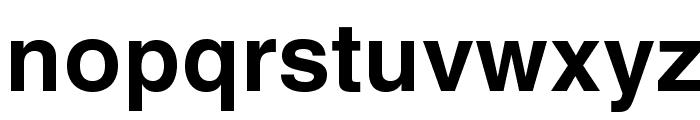 HelveticaLTStd-Bold Font LOWERCASE