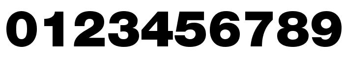 HelveticaNeueLTStd-Blk Font OTHER CHARS