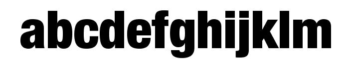HelveticaNeueLTStd-BlkCn Font LOWERCASE
