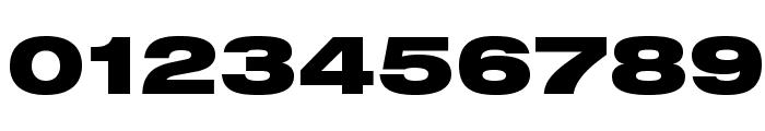 HelveticaNeueLTStd-BlkEx Font OTHER CHARS
