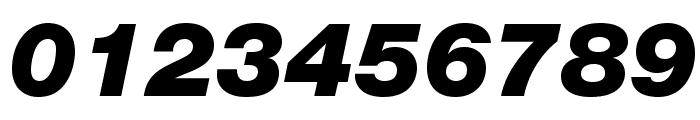 HelveticaNeueLTStd-BlkIt Font OTHER CHARS