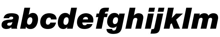 HelveticaNeueLTStd-BlkIt Font LOWERCASE