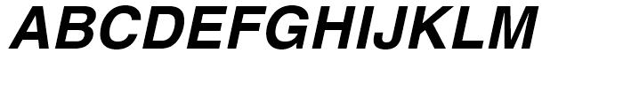 Helvetica Hebrew Bold Italic Font UPPERCASE