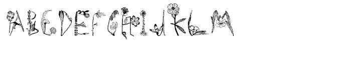 Herbarium Font UPPERCASE