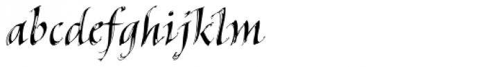 Hedera Std Font LOWERCASE