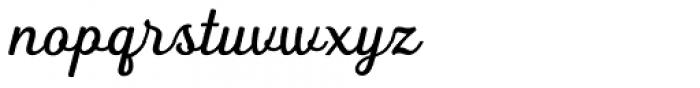 Heiders Script R Regular Font LOWERCASE