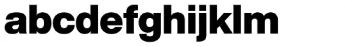 Helvetica Now Display Black Font LOWERCASE