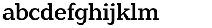 Henriette Medium Font LOWERCASE