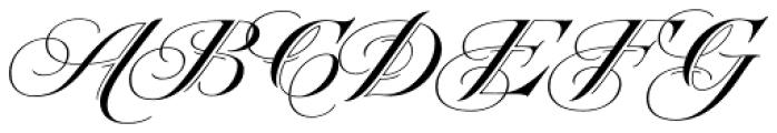 Heraldica Script Font UPPERCASE