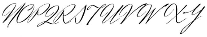 Herr Von Muellerhoff Pro Font UPPERCASE
