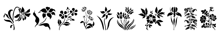 HFF Floral Stencil Font OTHER CHARS