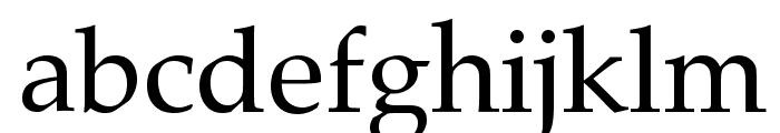 HI Piilani Roman Font LOWERCASE