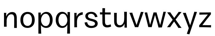 Burbank Small Light Medium Font LOWERCASE