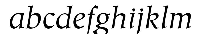 HiroshigeStd-BookItalic Font LOWERCASE